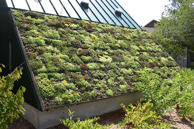 800px-Awesome_Green_Roof